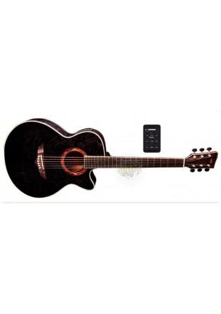 Vgs gitara elektroakustyczna V- 2A CE/F Passat Transparent Black